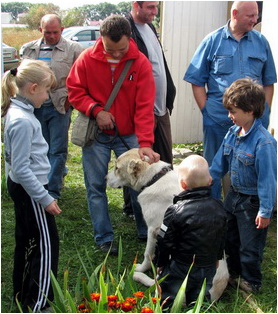 Чемпионат Украины по программе Охранная собака – А (породы ВКП) 2011